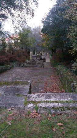 Mosteiro de São Martinho de Tibães: jardim