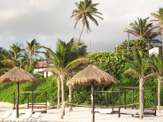 Grand Oasis Cancun : View