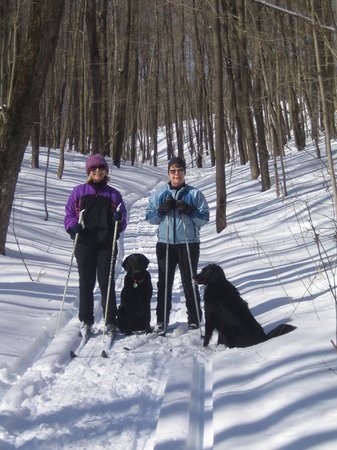 Forks in the Trail Bed and Breakfast: Cross country skiing at the Forks