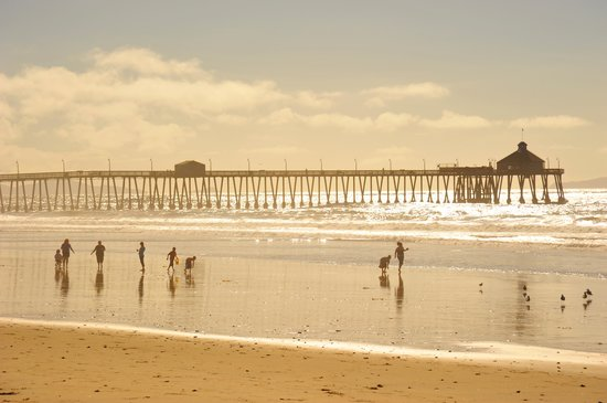 Imperial Beach Pier: Looking from the North