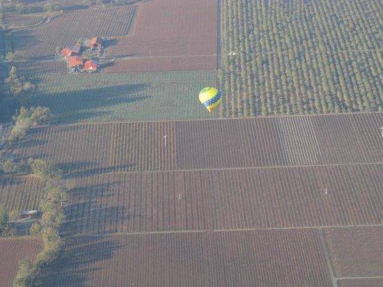Up & Away Ballooning: 7