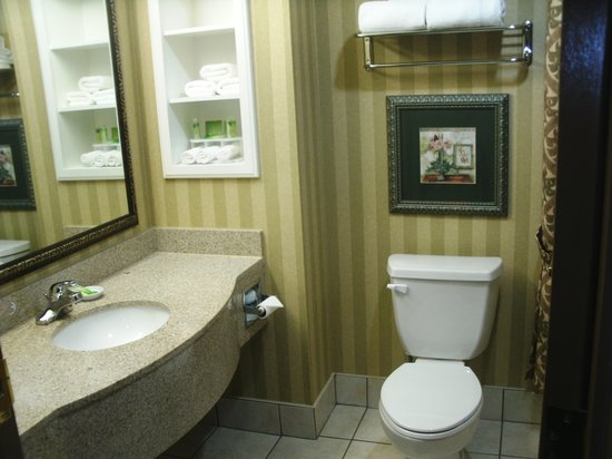 Holiday Inn Express Suites Lake Worth NW Loop 820: Bathroom