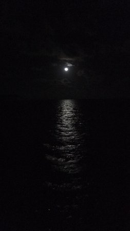 Ambergris Divers Resort: moonlight