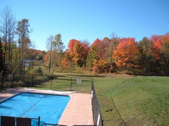 Quiet Bay Log Motel & Cafe: Swimming pool