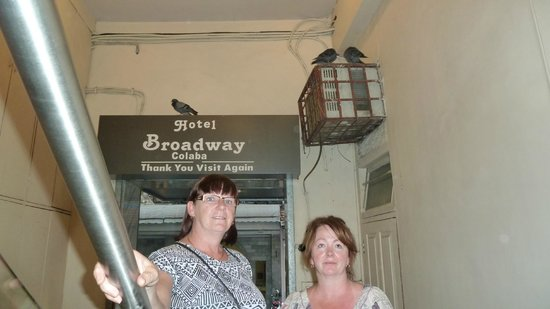 Hotel Broadway: Hotel for pigeons lol