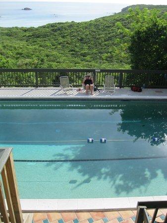 Concordia Eco-Resort : Concordia pool overlooking Salt Pond Bay