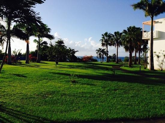 Karibea Resort Sainte Luce Amyris: Jardin, mer au fond.