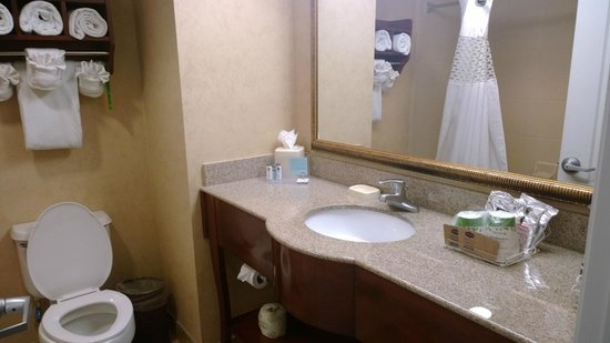 Hampton Inn Orlando/Lake Buena Vista: Bathroom