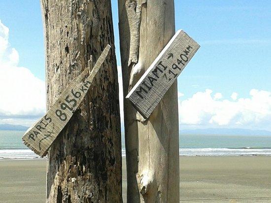 Cabinas Los Cocos : sur la plage