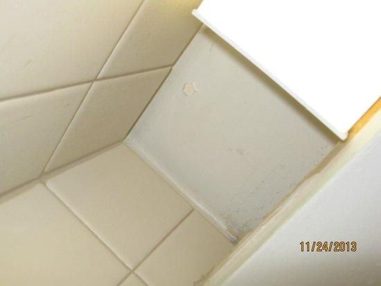 Hotel Alyeska: Peeling paint within shower