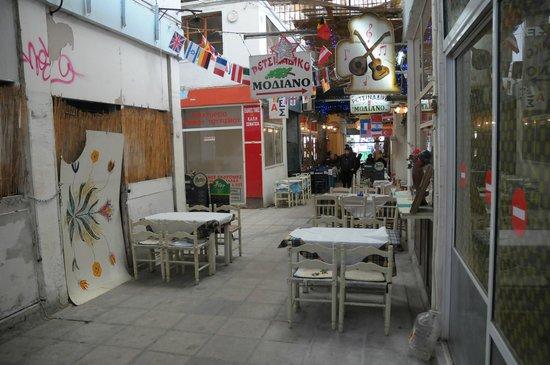 Modiano Market: Taverna