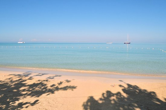 Negril Tree House Resort : Pristine Beaches at NTH