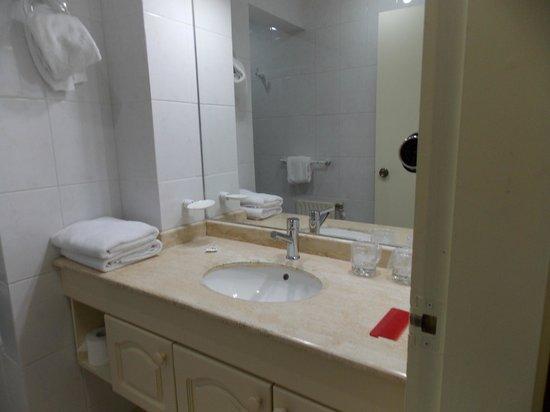 Del Volcán Apart Hotel: baño