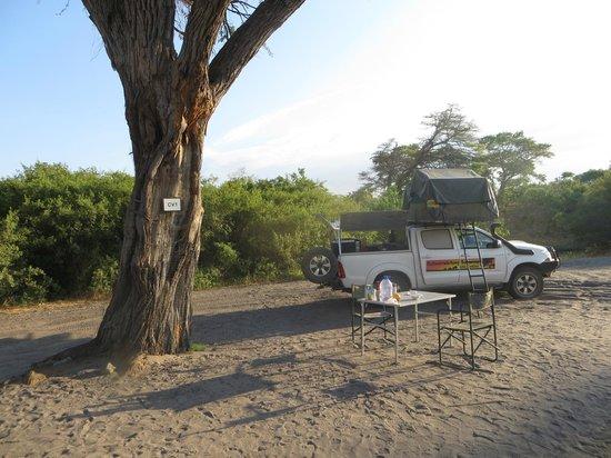 Camp Savuti: campsite #1