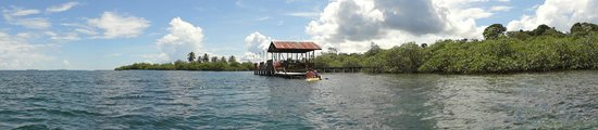 Tranquilo Bay Eco Adventure Lodge: Kayak