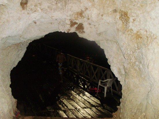 Multum Ha Cenote: Entrada