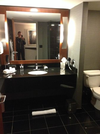 Grand Hyatt DFW: Bathroom Sink