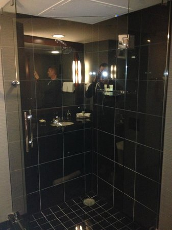 Grand Hyatt DFW: Bathroom Shower