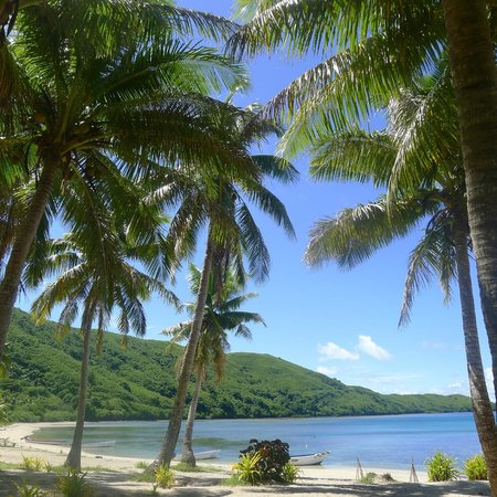 Mantaray Island Resort: Beach