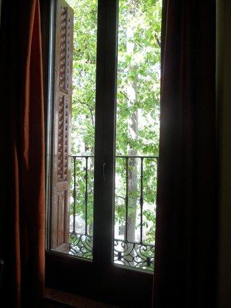 Pension Mollo: janela