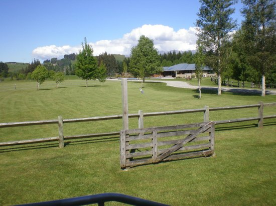 Acheron Cottages: View of back yard