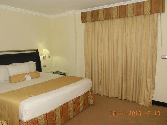Bakhos Suites Hotel: hab