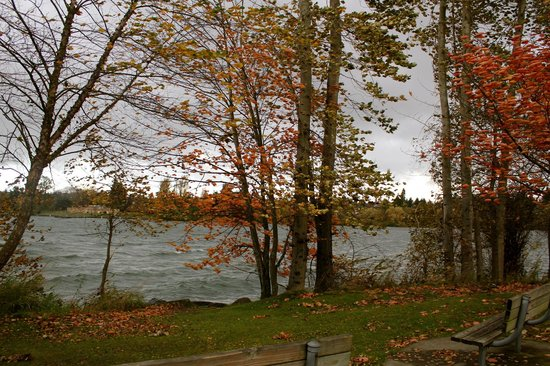 Greenlake Guest House: Lake on a Windy cold November morning love it