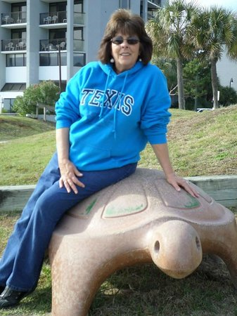 Dayton House Resort: Children's play area.  Many people take pictures of their children on the turtle.   Mine include