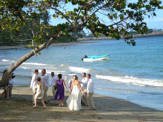 Cofresi Palm Beach Spa Resort Reviews Tripadvisor