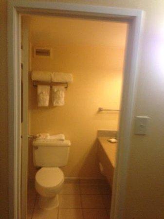 Hilton Houston Galleria Area: usual restroom