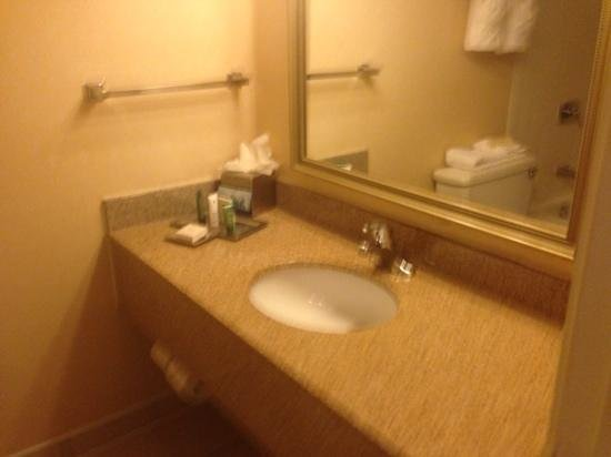Hilton Houston Galleria Area: restroom, usual space
