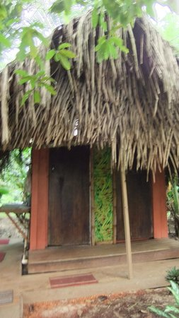 Parrot Nest Lodge: bano