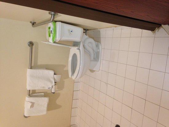 Non Ada Bathroom jacuzzi suite - picture of baymont inn & suites jonesboro