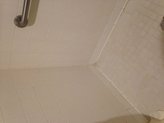 Baymont Inn & Suites Jonesboro: Shower