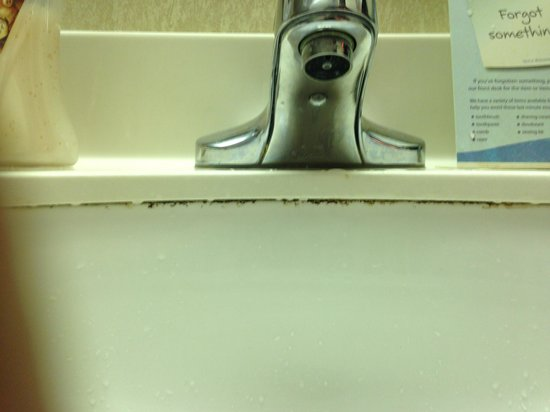 Baymont Inn & Suites Jonesboro: Sink
