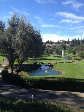 Rancho Bernardo Inn: view from Veranda patio restaurant