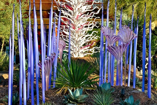 Chihuly Glass Sculpture Picture Of Desert Botanical Garden Phoenix Tripadvisor
