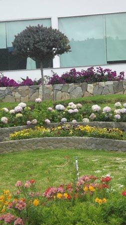 Cariongo Plaza Hotel: Jardines