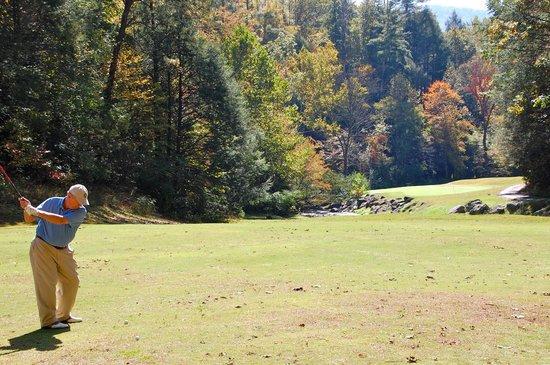 Deer Ridge Mountain Resort: view on property