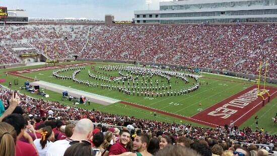 Florida State University : stadium fsu football game
