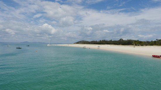Coral Inn Yeppoon: great keppel island 1