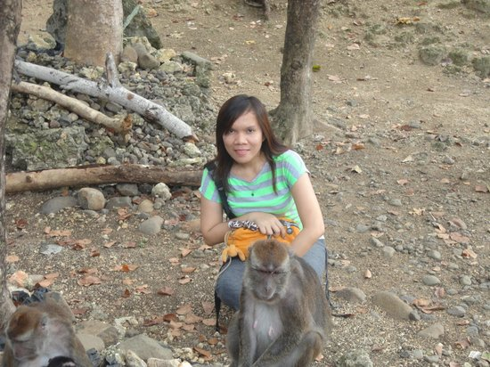 Calatrava Monkey Sanctuary: Very friendly