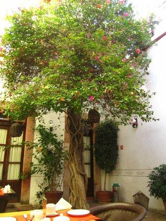 Hotel Villa del Villar: Patio
