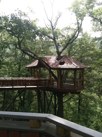 Nay Aug Park: We love the tree house