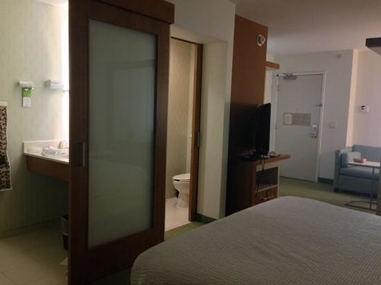 SpringHill Suites Ashburn Dulles North: facing the bathroom