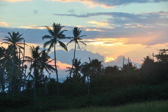 Nisbet Plantation Beach Club : Sunrise