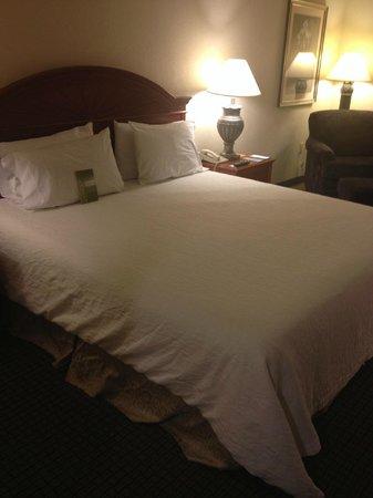Hilton Garden Inn Detroit Downtown: Bed