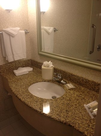 Hilton Garden Inn Detroit Downtown: Sink