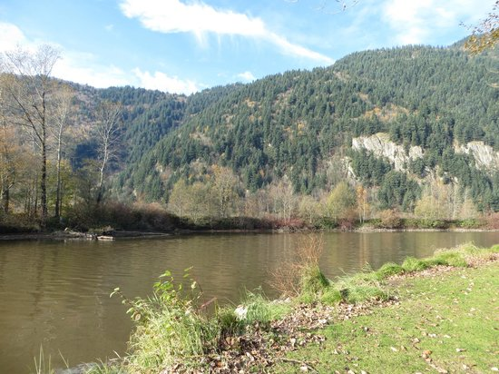 Great River Fishing Adventures: This is the Sumas River
