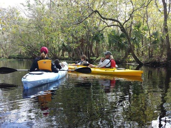 Central Florida Nature Adventures: 11-25-13